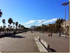 20131112_Beach Walkway (Small)