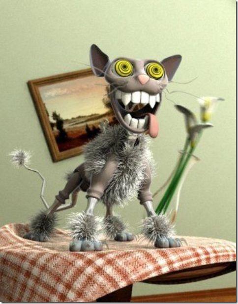 fotos animales divertidas patatitasylimones (1)