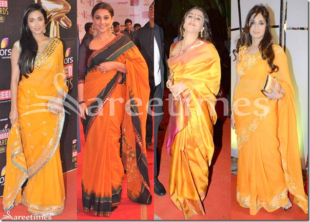 Bollywood_Saree_Fashion_2013(4)