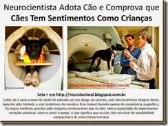 Neurocientista Adota Cão e Comprova que Cães Tem_thumb[1][4][2]