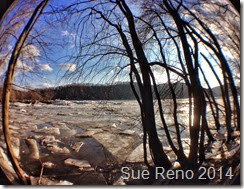 er ice jam, by Sue Reno, Fisheye  Image 2
