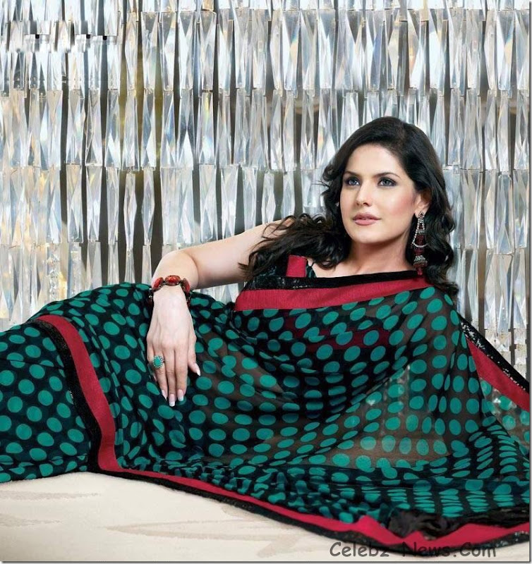 zarine-khan-saree-12
