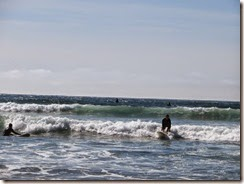cannon beach 13