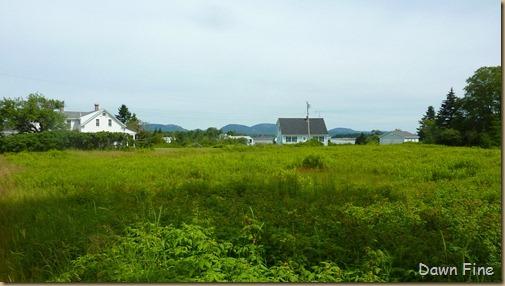 Acadia National Park_121