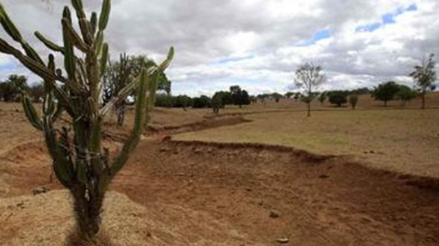 A dry riverbed in Brazil, 6 January 2013. Brazil's northeast is suffering its worst drought in decades. presstv.com