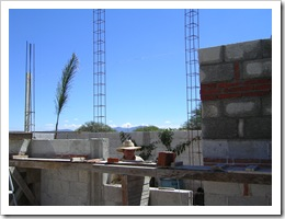 Second phase walls 004