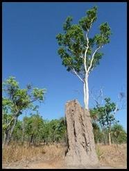 Australia, Kakadu, 8 October 2012 (2)