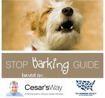 Stop barking guide based on Cesar Millan and The Humane Society