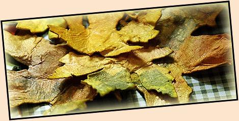 #133-leaves