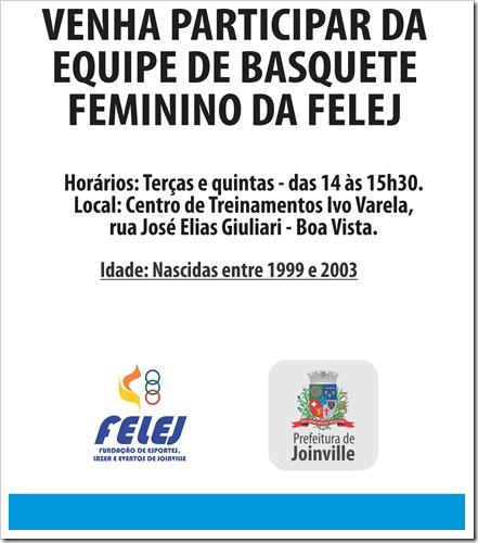 cartaz basquete