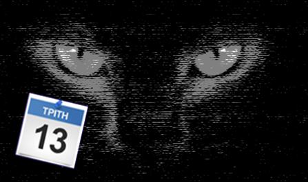 Black-Cat1111