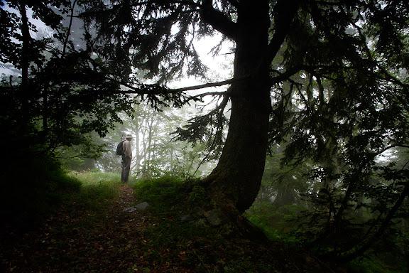 Capcelera de la vall de Toran, camí de Liat per les gorges d'Ermèr, GR 211Canejan, Val d'Aran, Lleida