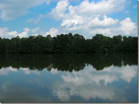 Reflections at the Lake