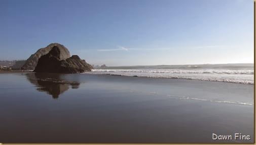Harris Beach_110