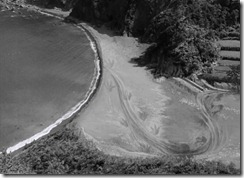 Gojira Tracks