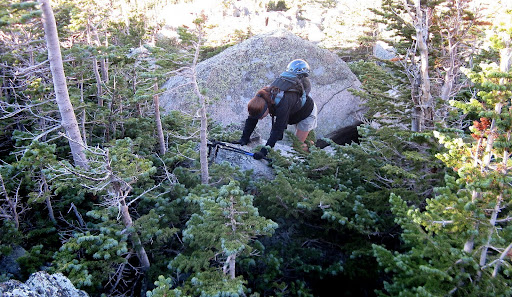 Stephanie trying out the art of scambling atop huge boulders interspersed with little spruce trees!