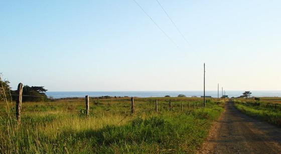 Camaronal_Beach_Road_02