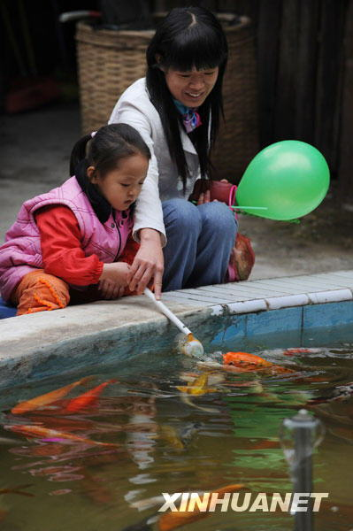 Feeding bottle sucking fish in China