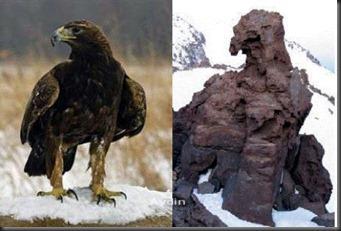 Sabalan_Eagle1