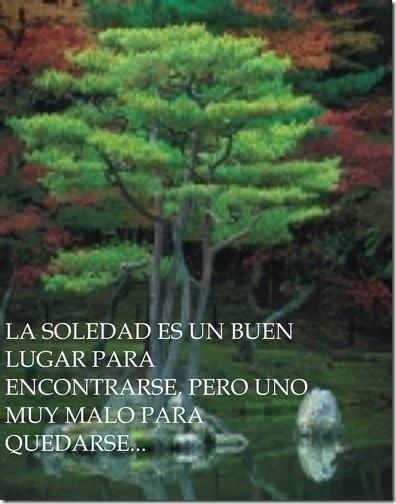 soledad (9)