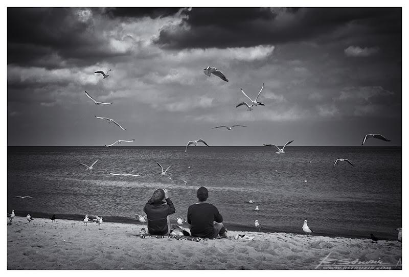 Sopot, plaża. Nad głowami dwójki spacerowiczów mewopodobne udowadniały, że są specjalistami z dziedziny aerodynamiki...