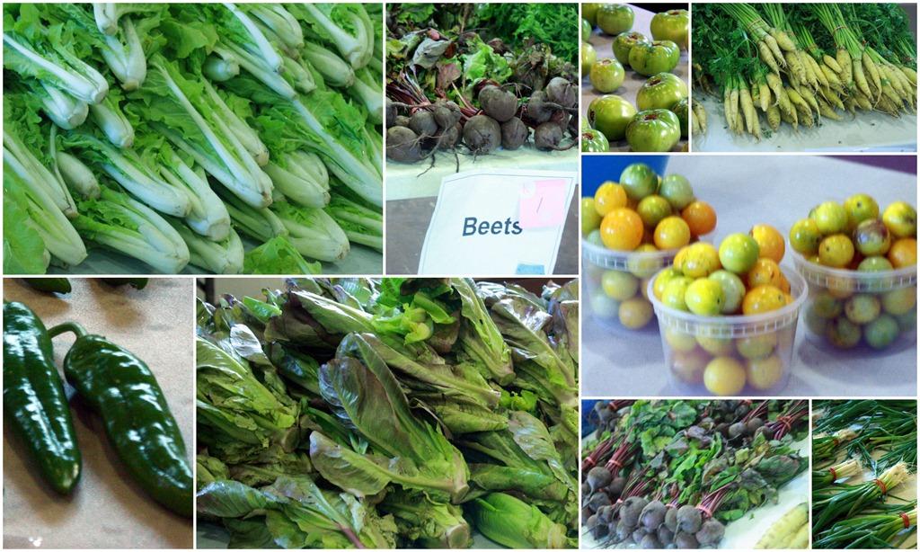 [Bronx-CSA-Collage-Farm-share%255B7%255D.jpg]