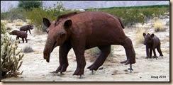 Merriam's Tapir