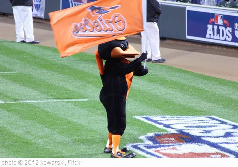 'Taken at Orioles-Yankees ALDS Game 2 (10/8/12)' photo (c) 2012, kowarski - license: http://creativecommons.org/licenses/by/2.0/