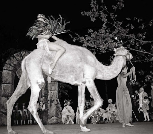 French starlet, Zizi Jeanmaire and her camel at the Cuevas Ball.