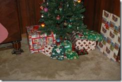 cristmas and stuff 004