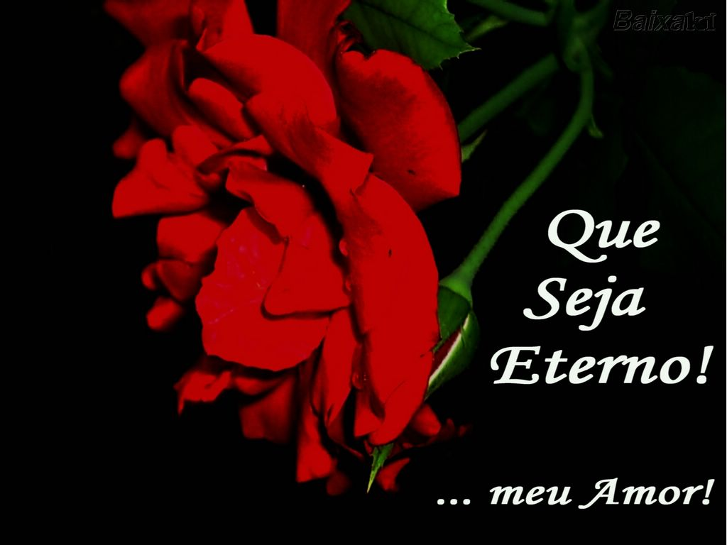 Frases De Amor Namorado Quotes Links
