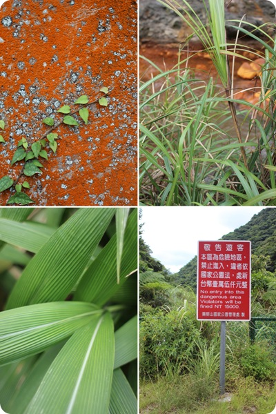 taiwan027-petit
