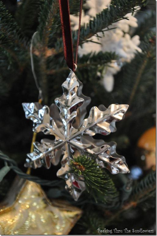2014 ornament 012