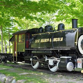 On Display by Janice Burnett - Transportation Trains ( steam locomotive, steam engine, steam train, train history, nostalgia )
