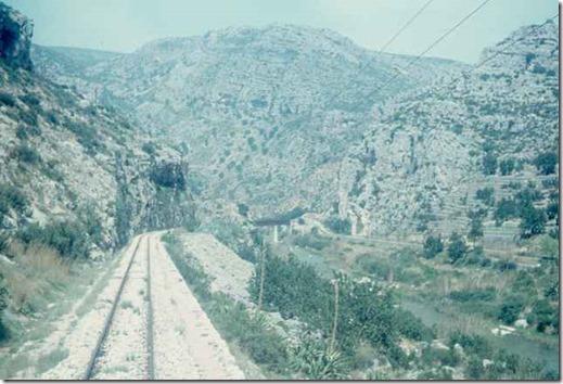 TrainCol (22)