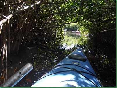 Turner River Paddle 1 (32)