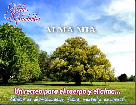 Salidas Saludables Alma Mia Arboles 03