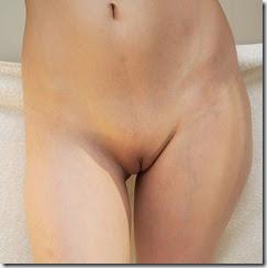 598px-Female_abdomen_frontal_view