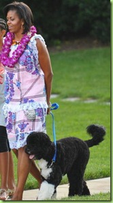 michelle-obama-and-tracy-feith-spirit-dress-gallery