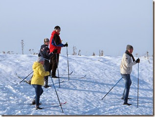 Лыжи 046