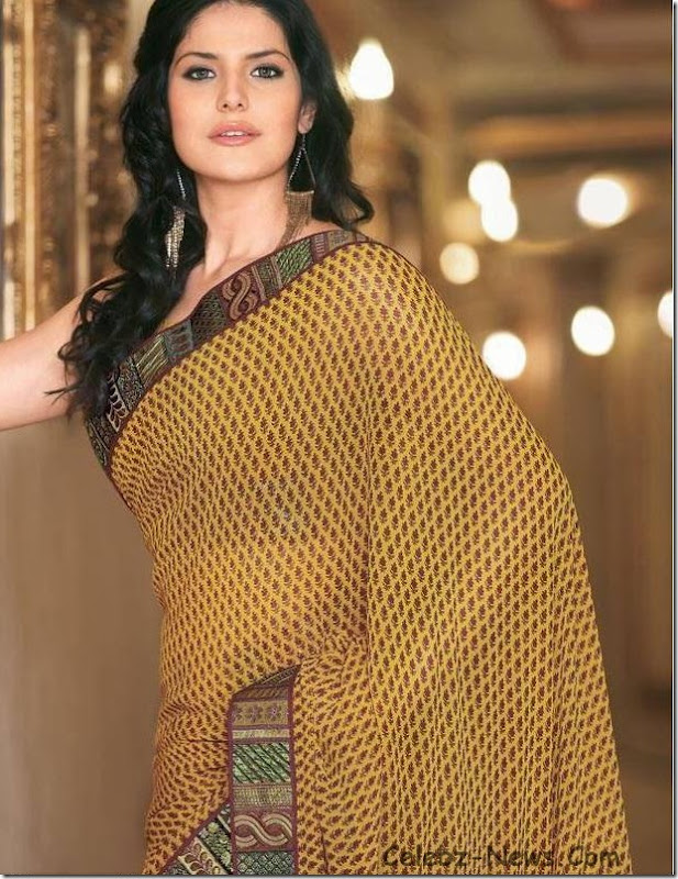 zarine-khan-saree-13