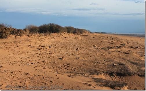 89-damaged-dunes