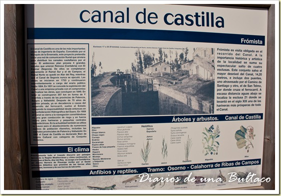 Canal-6