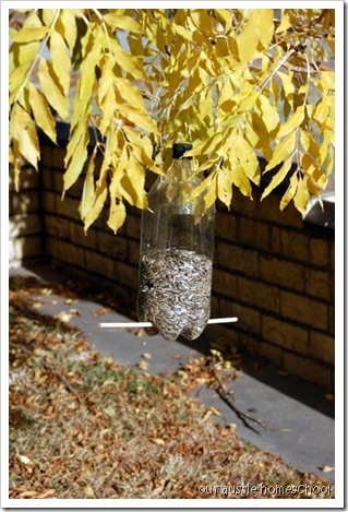 Our Aussie Homeschool ~ Homemade Birdfeeder
