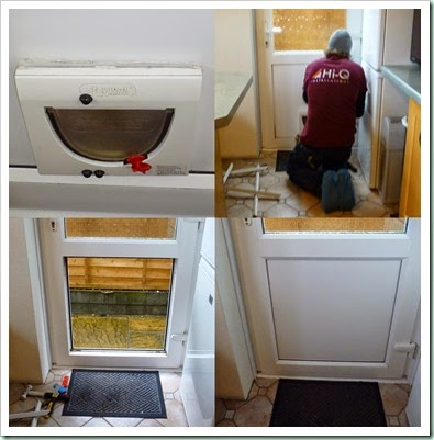 catflap replacement