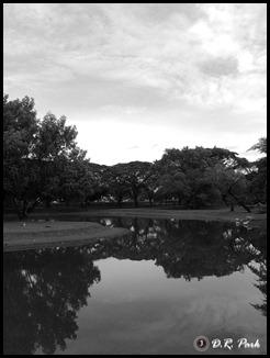 photo0447