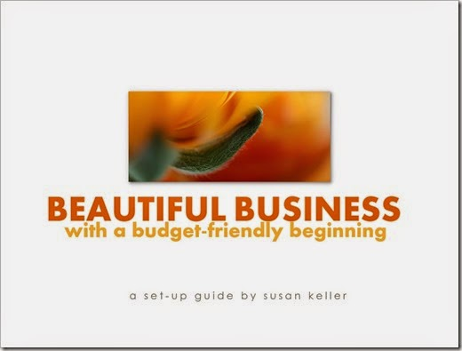Budget Friendly Business Beginnings 001 (Side 1)