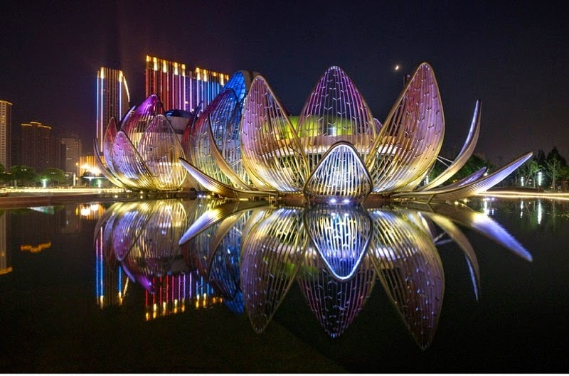 lotus-building-wujin-3