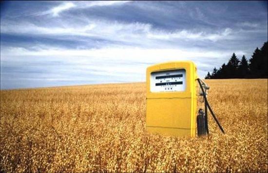 biocarburantes y biocombustibles