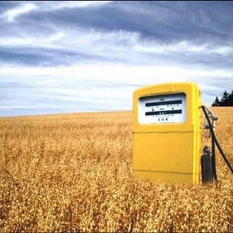En España la Comisión Nacional de la Energía no admitirá cualquier biocombustible